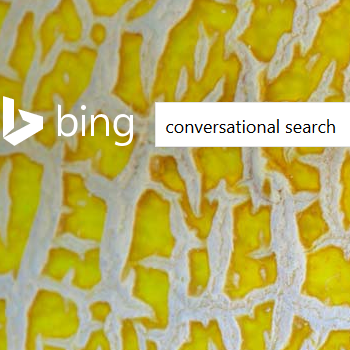 Bing Moves Into Conversational Search