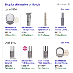 AdWords Sorting Shopping Campaigns Products By Price Point