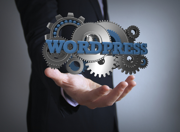 Favorite WordPress plugins of an SEO.