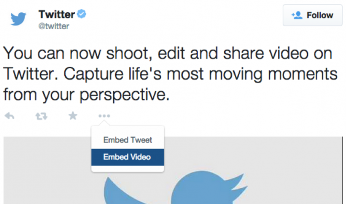 Embed Twitter Videos Directly To Websites