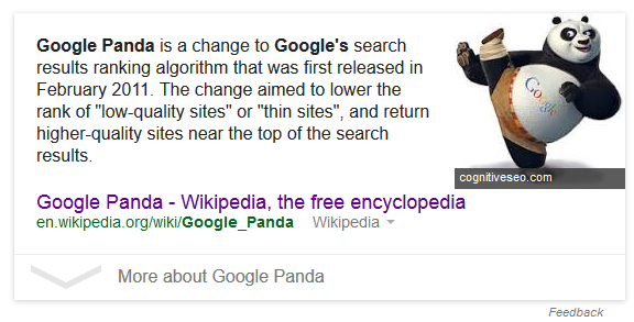 google panda answer box 2