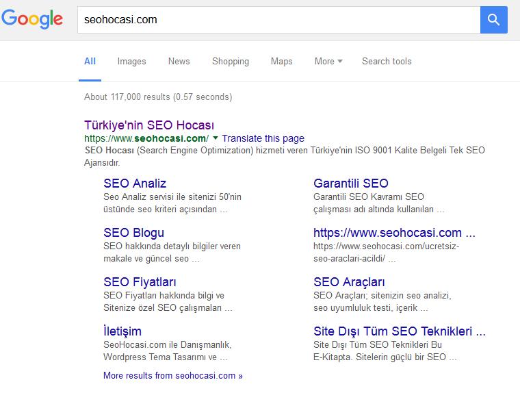 seohocasi-google-serps