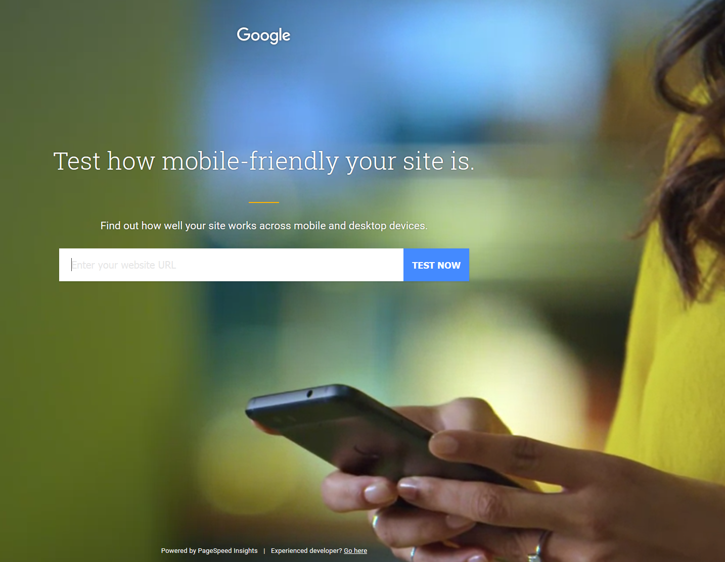 google-test-site-homepage-2