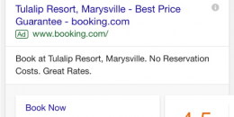 Google Adds New AdWords & Reviews Hybrid Mobile Ad
