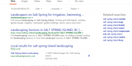 Bing Testing Blended Local Mini One Pack in Search Results